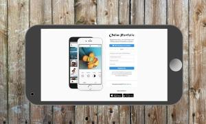 blog.online_portfolio